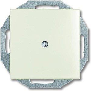 Фото ABB Basic55 2CKA001710A3940 Вывод кабеля (под рамку, с/у, chalet-белый)