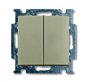 Фото ABB Basic55 2CKA001012A2167 Выключатель двухклавишный (10 А, под рамку, скрытая установка, шампань)