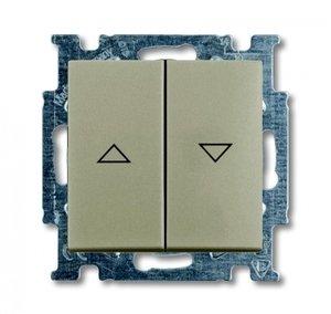 Фото ABB Basic55 2CKA001012A2166 Выключатель двухклавишный жалюзийный (10 А, под рамку, скрытая установка, шампань)