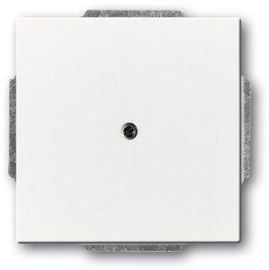 Фото ABB Carat/Future Linear/Solo/Busch-Axcent 2CKA001710A3991 Заглушка с суппортом (под рамку, с/у, белая)